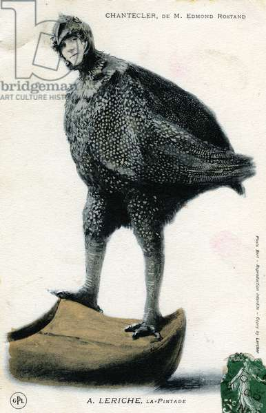 "Character of the play """" Chantecler"""" by Edmond Rostand: A. Leriche in the role of the guinea fowl postcard 1910 - photo Bert"