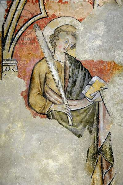 A standing character, life-size, holds a manuscript and palm. It is Saint Just or Saint Pastor. 14th century mural from the Palace of the Archeveques of Narbonne and preserved in the archeological museum of this city (Aude, Languedoc, Occitanie), fresco, writing, book, reflection, intelligence, intellectual - Photo Patrice Cartier -