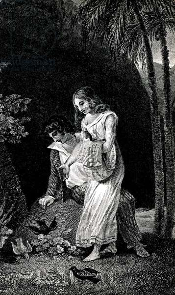 Engraving illustrating a late 19th century edition of the novel by Jacques-Henri Bernardin de Saint Pierre (Jacques Henri Bernardin de Saint-Pierre): Paul et Virginie. Birds come to land without fear near the young couple of lovers in the forest. Drawing by Dessenne or Emile Bayard.