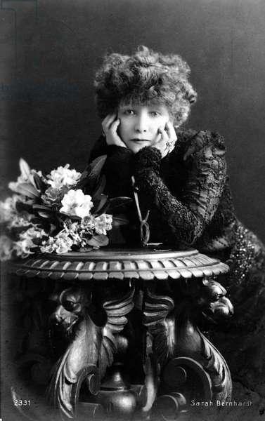 Portrait of Henriette Rosine Bernard dit Sarah Bernhardt (1844-1923), dramatic artist - postcard