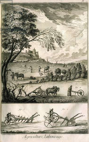 Field work - Agriculture, sowing, ploughing. Various model rolls and ploughs: Plate of a volume of illustrations from the Encyclopedie of Diderot, original edition 1762 (engraving)