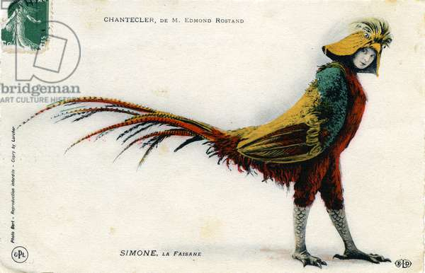 "Character of the play """" Chantecler"""" by Edmond Rostand Mme Simone in the role of pheasant, postcard 1910 - photo Bert"