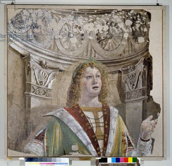 Il cantore, 1490-92 (detached fresco carried on canvas)