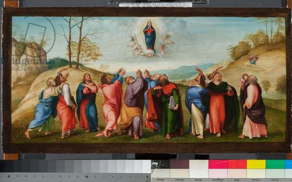 Assumption of the Virgin, 1514 (oil on panel)