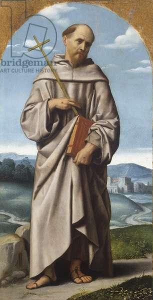 St. Francis, c.1529 (oil on canvas)