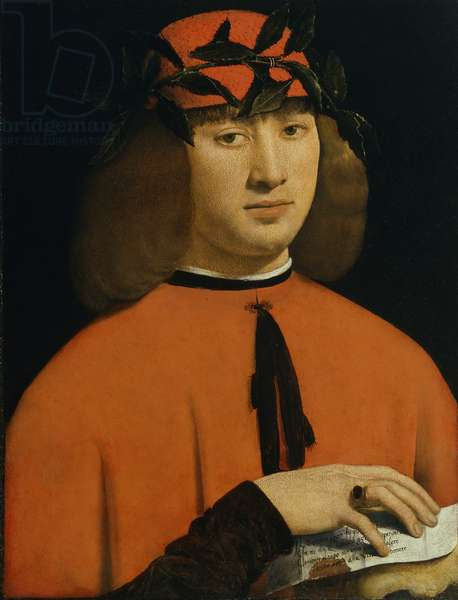 Portrait of a young man, c.1500 (oil on panel)