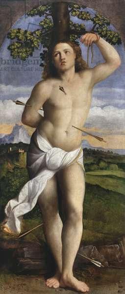 St. Sebastian, 1520-22 (oil on panel)