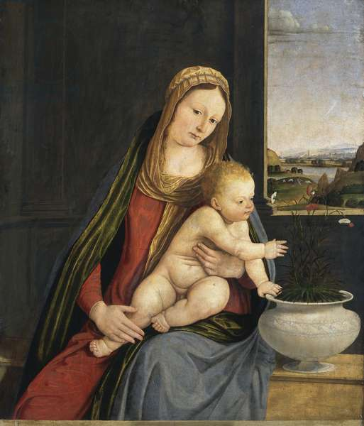 Madonna of the Carnations, c.1495 (oil and tempera on board)