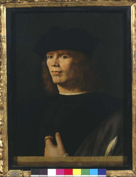 Portrait of a young man, 1500-05 (oil and tempera on board)