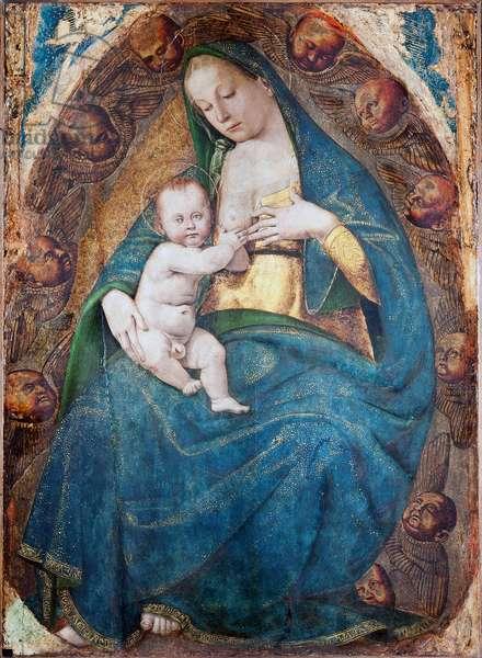 Nursing Madonna, 1482-c.1485 (tempera on board)