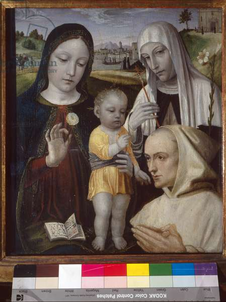 Madonna and Child, Saint Catherine of Siena and a Carthusian monk, 1488-94 (tempera on panel)