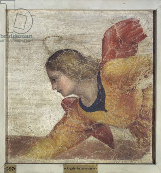 Angel, 1520-21 (detached fresco mounted on canvas)