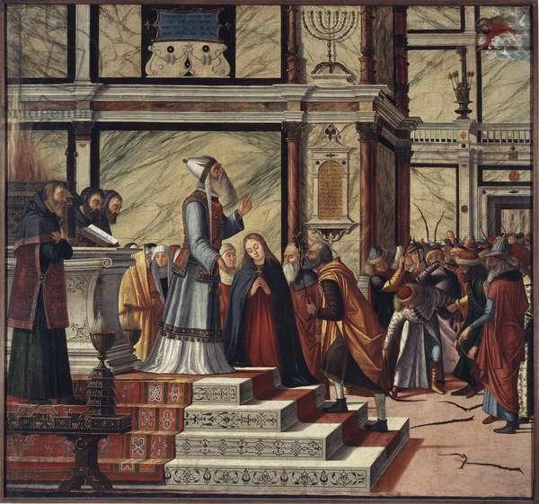 Marriage of the Virgin, 1502-04 (olio su tela)