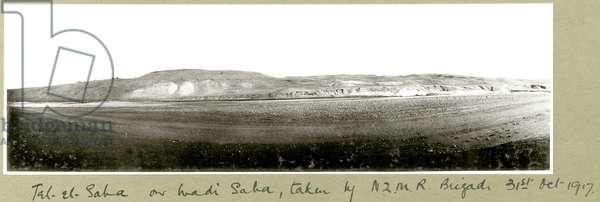 Tel-el-Saha, on Wadi Saha, taken by N.Z.M.R. Brigade, 31st October 1917 (b/w photo)