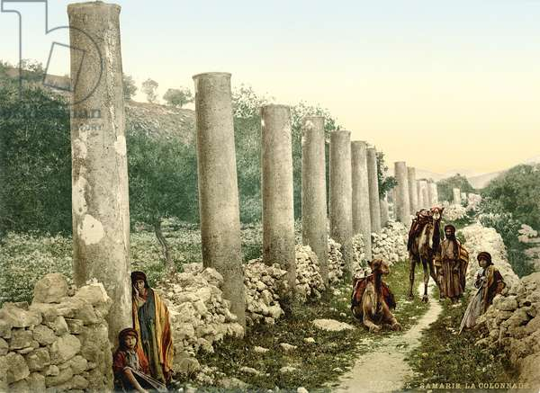 Roman colonnaded street at Samaria, c.1880-1900 (photochrom)