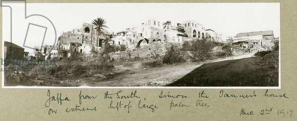 Jaffa from the south, Simon the Tanner's house on the left of the palm tree, 2nd December 1917 (b/w photo)