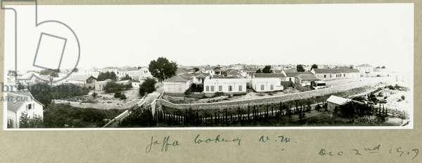 Jaffa looking North West, 2nd December 1917 (b/w photo)