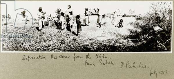Bedouins separating corn, Beni Saleh, July 1917 (b/w photo)
