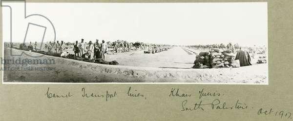 Camel Transport Lines, Khan Yunis, October 1917 (b/w photo)