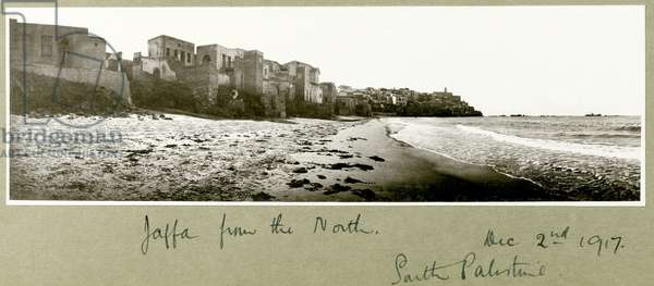 Jaffa from the North, 2nd December 1917 (b/w photo)
