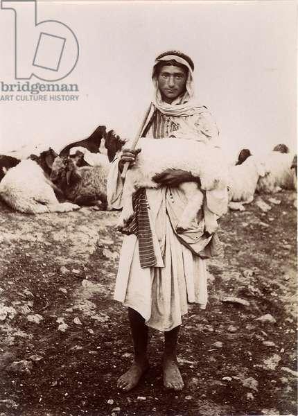 A shepherd boy carrying a lamb, c.1894-1914 (b/w photo)