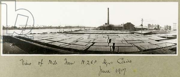 View of the Nile from N.Z.M.F.A. Headquarters, Cairo, June 1917 (b/w photo)