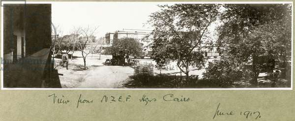 View from N.Z.M.F.A Headquarters, Cairo, June 1917 (b/w photo)