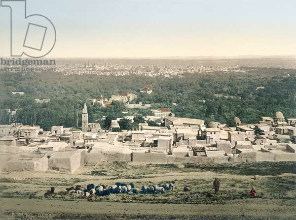 General view of Damascus, c.1880-1900 (photochrom)
