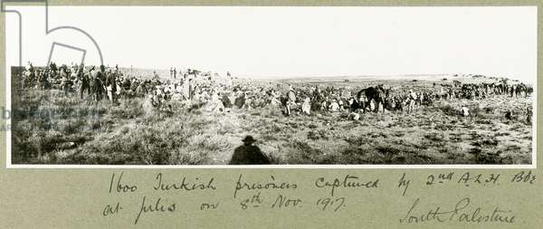 1600 Turkish prisoners captured by the 2nd A.L.H. Brigade, 8th November 1917 (b/w photo)