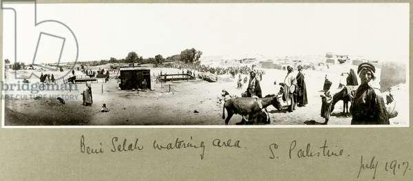 Beni Saleh watering area, July 1917 (b/w photo)
