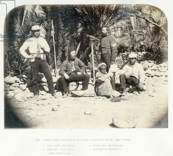 Non commissioned members of the Royal Engineers on the Sinai Survey, 1868 (b/w photo)