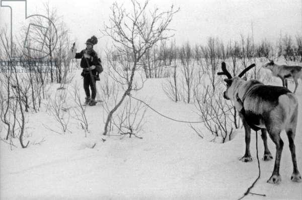 Lapp with reindeers, during the travel in Swedish Lapland, Kiruna, 1939 (b/w photo)