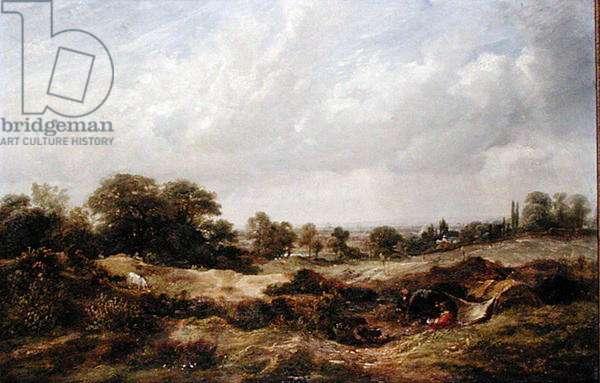 Study from Nature, Hampstead Heath, 1849 (oil on canvas)