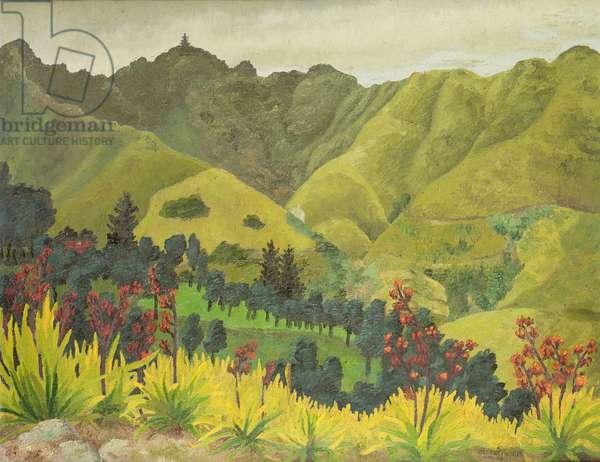 Landscape, Diana's Peak, St Helena, 1964 (oil on canvas)
