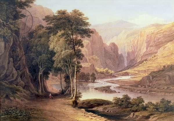 Tasmanian Gorge (w/c)
