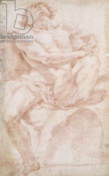 Male Nude on a Bed (red chalk)