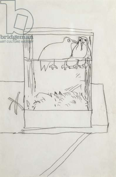 Birds in a Cage, c.1947 (pencil on paper)