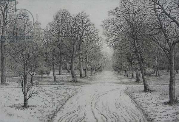 Kew Gardens in Winter
