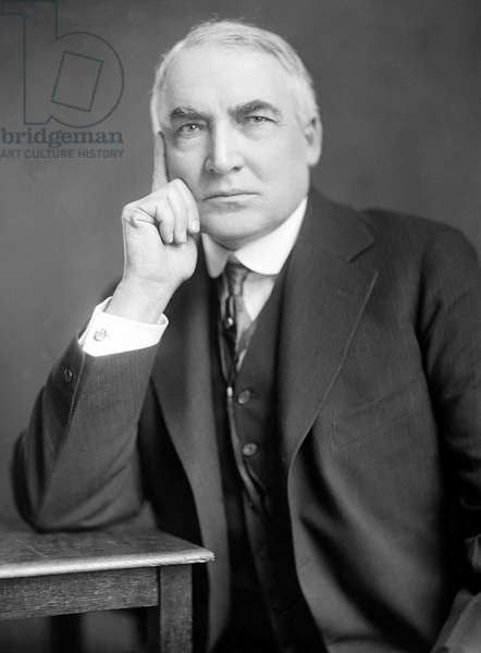 USA: Warren G. Harding (1865 – 1923) was the 29th President of the United States, serving from 1921 to 1923. Photographic portrait, Harris and Ewing, c. 1920