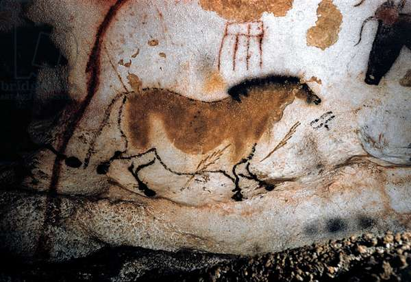 France: Upper Paleolithic cave painting of animals from the Lascaux Cave complex, Dordogne, France, estimated to be c. 17,300 years old