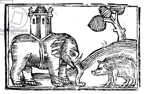 England: Elephant and Castle (with giant wild boar) from the Travels of John Mandeville (c. 1360)