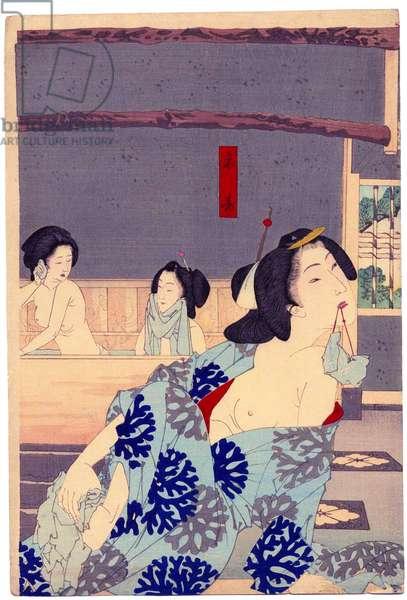 Japan: 'Summer: The Daishoro flower garden in Nezu' (central panel of tryptych). Tsukiokoa Yoshitoshi (1839-1892)
