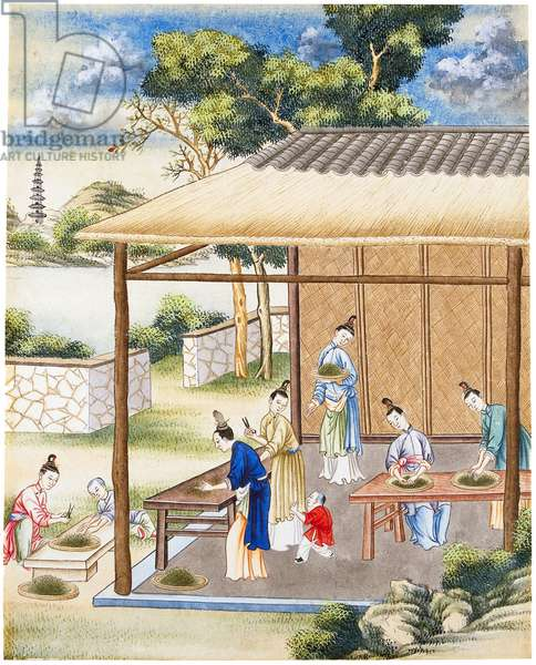 China/Netherlands: Women sorting tea on a porch, southern China. Part of a group of four gouaches on the production and export of Chinese tea by the VOC around 1750
