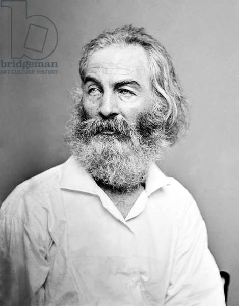 USA: Walter 'Walt' Whitman, American poet, essayist and journalist (1819-1892) 'aged about fifty', therefore c. 1869