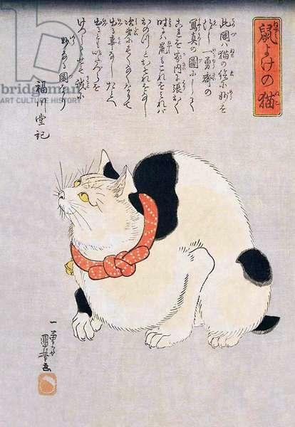 Japan: A Japanese cat. Utagawa Kuniyoshi, a noted cat lover (1797/8 -1862)