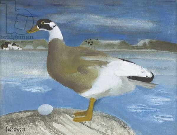 Shelduck, 1995 (oil on canvas)