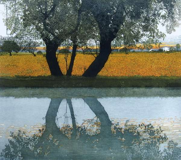 Reflections, 1992, 1992 (etching and aquatint)