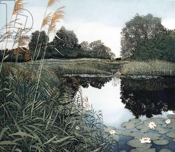 Wicken Fen, 1982 (etching and aquatint)