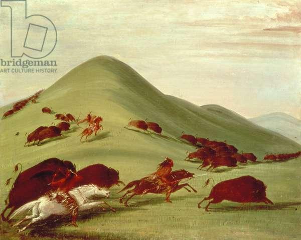 The Buffalo Hunt (oil on canvas)