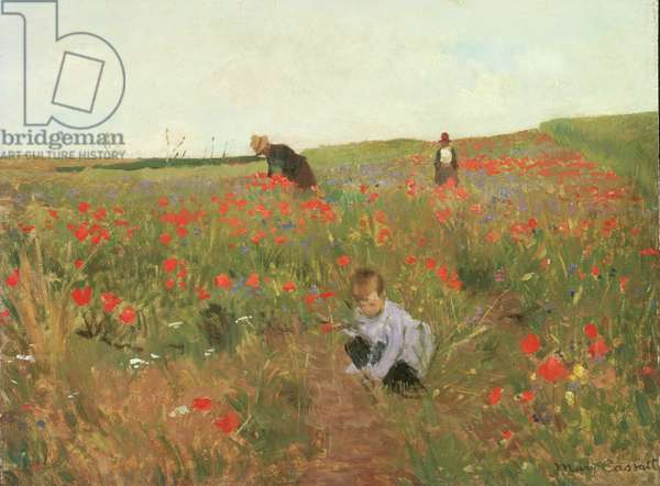 Poppies in a Field, c.1880 (oil on panel)